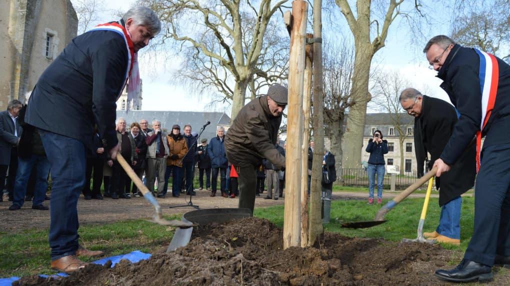 "Lors de la replantation de l'arbre de la laïcité, vendredi."""