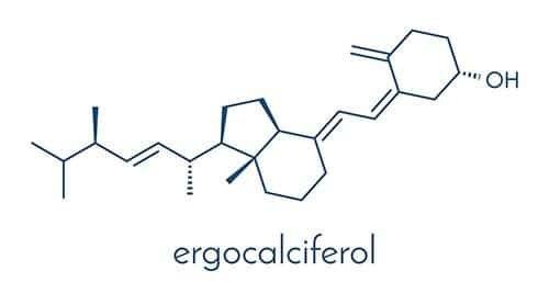 représentation moléculaire de l'ergocalciférol